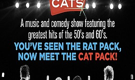 Promo graphic for The Alley Cats