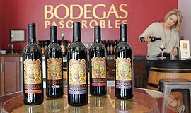 Promo graphic for Wine Tasting With Bodegas Winery
