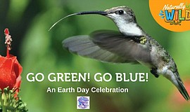 Promo graphic for Earth Day: Go Green! Go Blue!