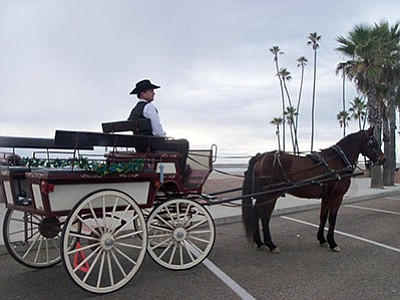 Promotional photo for Horse & Carriage Rides - part of Oc...