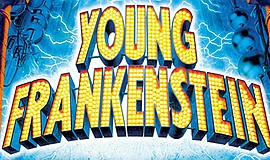 "A promotional poster for ""Young Frankenstein,"" courtesy o..."