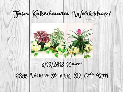Promotional graphic for the workshop. Courtesy of Kodama ...