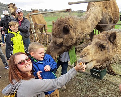 Promotional photo of family at Open Farm Day. Courtesy of...