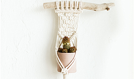 Promo graphic for Mini Macrame Plant Hanger + Clay Pot ...