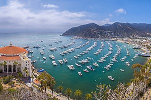 Promotional photo of the Channel Islands. Courtesy of Lindblad Expeditions
