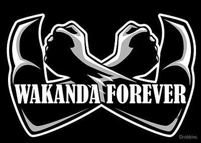 "Promotional graphic ""Wakanda Forever"" for the community d..."