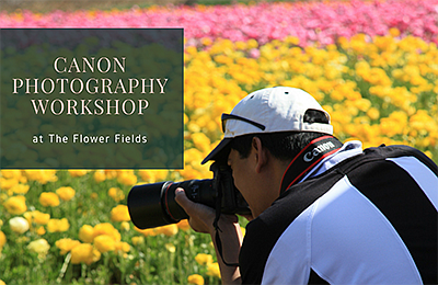 Promotional photo for the Canon photography workshop. Cou...