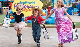 Promotional photo for the Halloween Spooktacular at SeaWo...