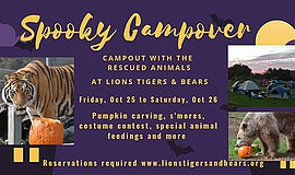 Promotional graphic for the Spooky Campover at Lions Tige...