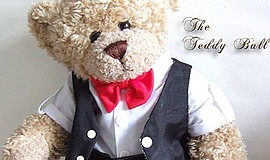 Promotional photo for the 2019 Teddy Ball