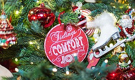Promotional photo for the Christmas Day Dinner and celebr...