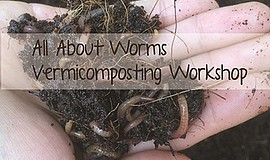 Promo graphic for All About Worms