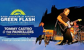 Promotional graphic for Green Flash Concert Series. Court...