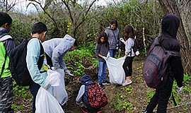 Promotional photo for Creek to Bay Cleanup. Courtesy of I...
