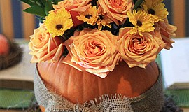 Promo graphic for Craft + Sip: Pumpkin Centerpieces At ...