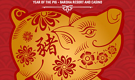 Promo graphic for Welcome 'The Year Of The Pig' At Baro...