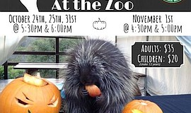 Promotional photo for Boo at the Zoo. Courtesy of Wild Wo...