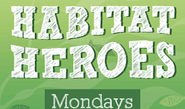 Promo graphic for Habitat Heroes Virtual After School P...