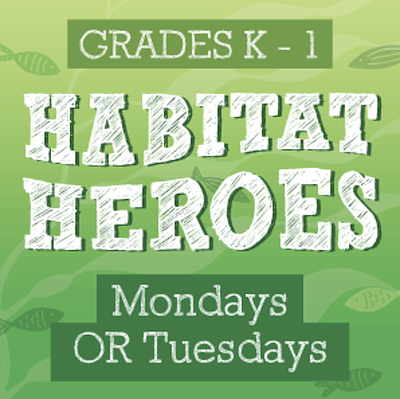 Promotional photo for Habitat Heroes Virtual After School...