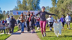 Promotional photo for the 2020 Walk For Animals - North County. Courtesy of S...