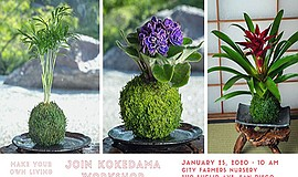 Promo graphic for Kokedama Workshop At City Farmers Nur...