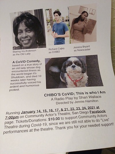"""Promotional photo for """"CHIBO'S CoVID: 'This Is Who I Am'""""..."""