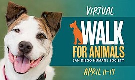 """Promotional graphic for """"Virtual Walk For Animals"""". Court..."""