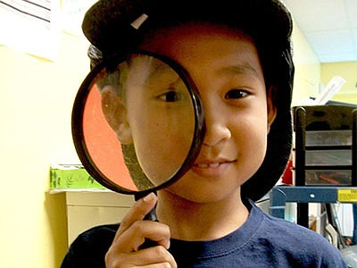 Promotional photo for Virtual Young Scientists. Courtesy ...