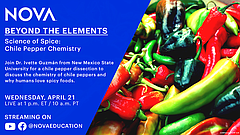 Learn the science of spice with NOVA Education's next virtual field trip on A...