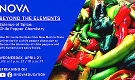 Promo graphic for Science Of Spice: Chile Pepper Chemistry