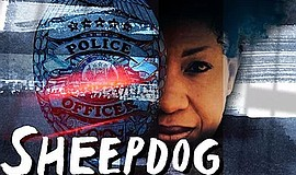 """Promotional graphic for """"Sheepdog"""" courtesy of OnStage Pl..."""