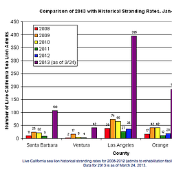 Sea Lion Stranding Rates