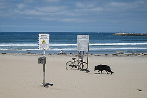 Tease photo for San Diego Beaches Test Poorly After Wet Weather