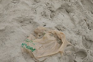 Tease photo for Calif. Enviro Groups Urge Passage Of Plastic Bag Bill