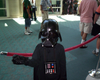 Top Ten Survival Guide To Comic-Con 2010