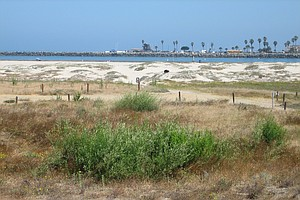 Tease photo for Calif. Coastal Commissioners Vote More For Conservation