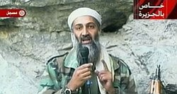 Tease photo for Local Reaction To Death Of Osama Bin Laden