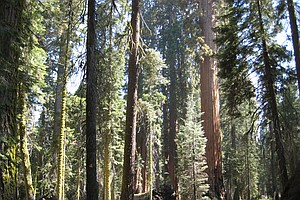 Tease photo for Calif. Proposes To Close 70 State Parks