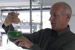 Algae Biofuels Inject Money Into The Southwest's Economy