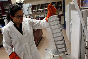 UC San Diego Scientists Net $12 Million For Stem Cell Res...