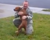 Very Excited Dog Reunites With Soldier Dad (Video)