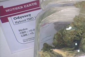 More San Diegans May Get To Vote On Medical Marijuana Dis...
