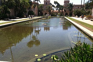 Tease photo for City Officials, Park Supporters Celebrate Repairs To Lily Pond