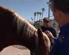 First Responders Learn How To Handle Animals During Emergencies