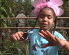 Giant 'Butterfly Jungle' Exhibit Comes To San Diego