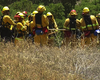 San Diego Fire Officials Keeping Close Watch On Record-Dry Vegetation