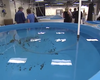 NOAA Opens New Marine Research Facility In La Jolla
