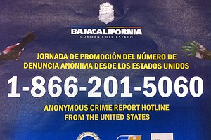 Baja's International Crime Hotline Produces Some Results