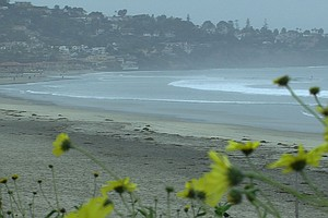 Tease photo for San Diego Water Quality Databases Track Pollution In Inland Watersheds