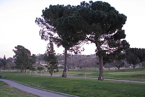 Residents Rally Against Plans For San Luis Rey Downs Golf...